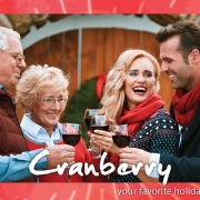Cranberry blog post pic 2017-01